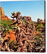 Flowering Cactus Framing The Sedona Landscape Acrylic Print