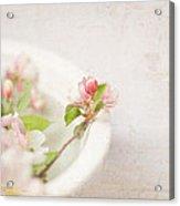 Flowering Crabapple In Bowl Acrylic Print