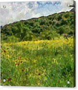 Flowering Fields Acrylic Print
