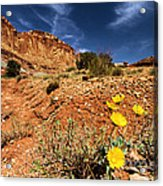 Flowers And Canyons Acrylic Print