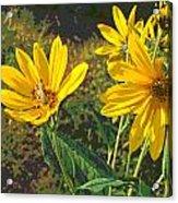 Flowers And Hopper Acrylic Print
