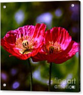 Flowers Are For Fun Acrylic Print