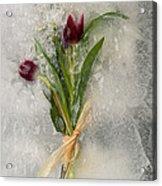 Flowers Frozen In Ice Acrylic Print