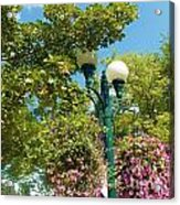 Flowers In The Plaza Acrylic Print