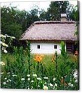 Flowers Near Rural House Acrylic Print by Aleksandr Volkov