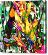Flowers On Fire Acrylic Print
