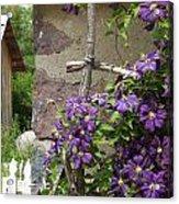 Flowers On The Garden Wall Acrylic Print