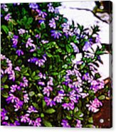 Flowers On The Hill Acrylic Print