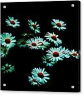 Flowers Only Acrylic Print