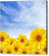 Flowers Over Sky Acrylic Print