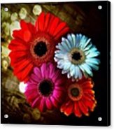 Flowers Part 3 Acrylic Print