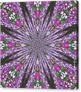 Flowery Snow Flake Acrylic Print