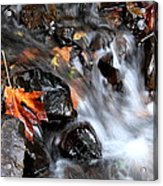 Flowing Color Acrylic Print