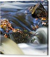 Flowing River IIi Acrylic Print