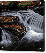 Flowing Through Fall Color Acrylic Print
