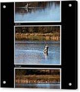 Fly Fishing Triptych Black Background Acrylic Print