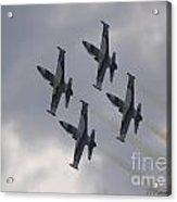Flying Close Acrylic Print