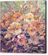 Flying Glory Acrylic Print