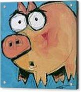 Flying Pig 1 Acrylic Print