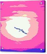 Flying To Heaven Acrylic Print