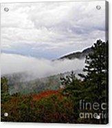 Fog And Foliage Acrylic Print