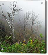 Foggy Day On The Blueridge Acrylic Print