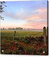 Foggy Morning Field Acrylic Print