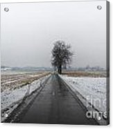 Foggy Winter Road Acrylic Print