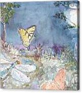 Follow The Firefly Acrylic Print by Dorothy Herron