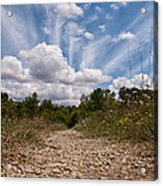 Follow The Path Acrylic Print