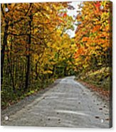 Follow The Yellow Leafed Road Acrylic Print