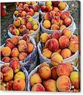 Food - Harvested Peaches Acrylic Print