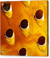 Food Grater Abstract 4 A Acrylic Print