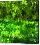 Forest Abstract Acrylic Print