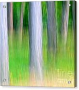 Forest Abstract Acrylic Print by Odon Czintos