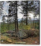 Forest Boulder Formation Near Red Lake Washington Acrylic Print