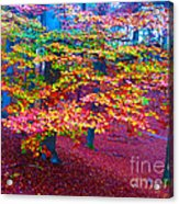 Forest Color Leaves Acrylic Print