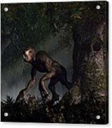Forest Creeper Acrylic Print