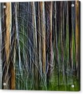 Forest Impression No.119 Acrylic Print