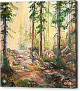 Forest Light Triptych Acrylic Print