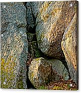 Forest Rocks Acrylic Print