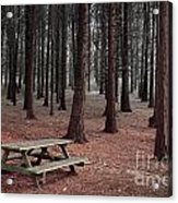 Forest Table Acrylic Print