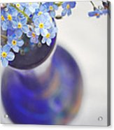 Forget Me Nots In Deep Blue Vase Acrylic Print