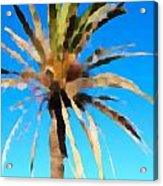 Fornells Palm Tree  Acrylic Print