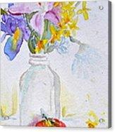 Forsythia And Ghost Daisies Acrylic Print