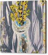 Forsythia In Old Clear Vase Mary Carol Acrylic Print