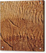 Fossilised Water Ripples In Sandstone Acrylic Print