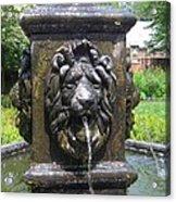 Fountain Lion Acrylic Print