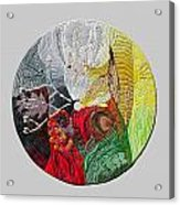 Four Directions  2 Acrylic Print by Arla Patch
