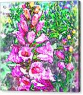 Foxglove Floral Acrylic Print